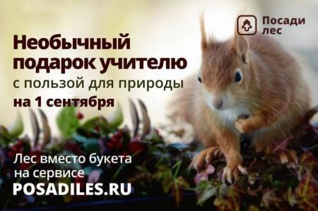 """Всероссийская акция """"Лес вместо букета"""" к 1 сентября"""