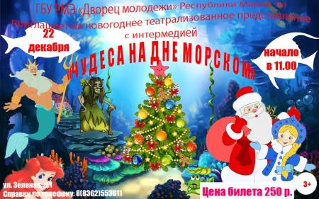 """Новогоднее театрализованное представление """"Чудеса на дне морском"""""""