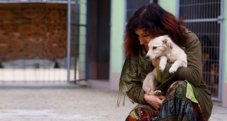 Меньше мусора - больше добра и уюта для бездомных животных в Марий Эл