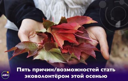 Осень - время добрых экодел. Пять причин/возможностей стать эковолонтёром этой осенью.