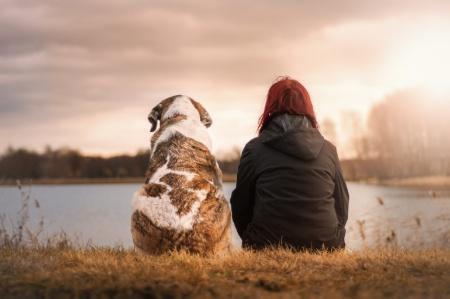 КОНКУРС ПРОЕКТОВ «Лапа дружбы» (проекты по спасению животных)